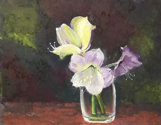 Nancy Veits