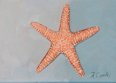 Orange Sea Star