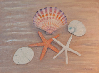 Stars and Shells