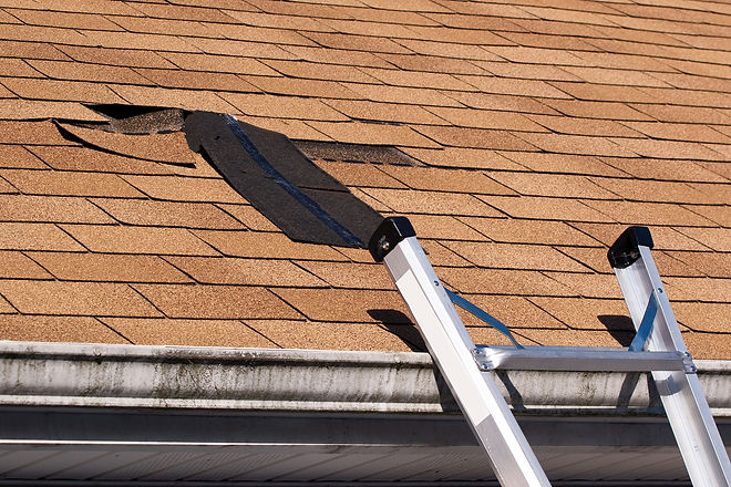 damaged-roof-shingles-repair-13499080.jp