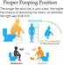 Proper Pooping Position