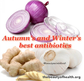 Best Natural Antibiotics in Autumn and Winter