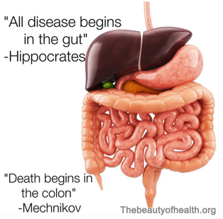 What happens in the gut, does NOT stay in the gut! Why I wrote my cookbook...