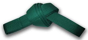 zielony pas 300x138.jpeg