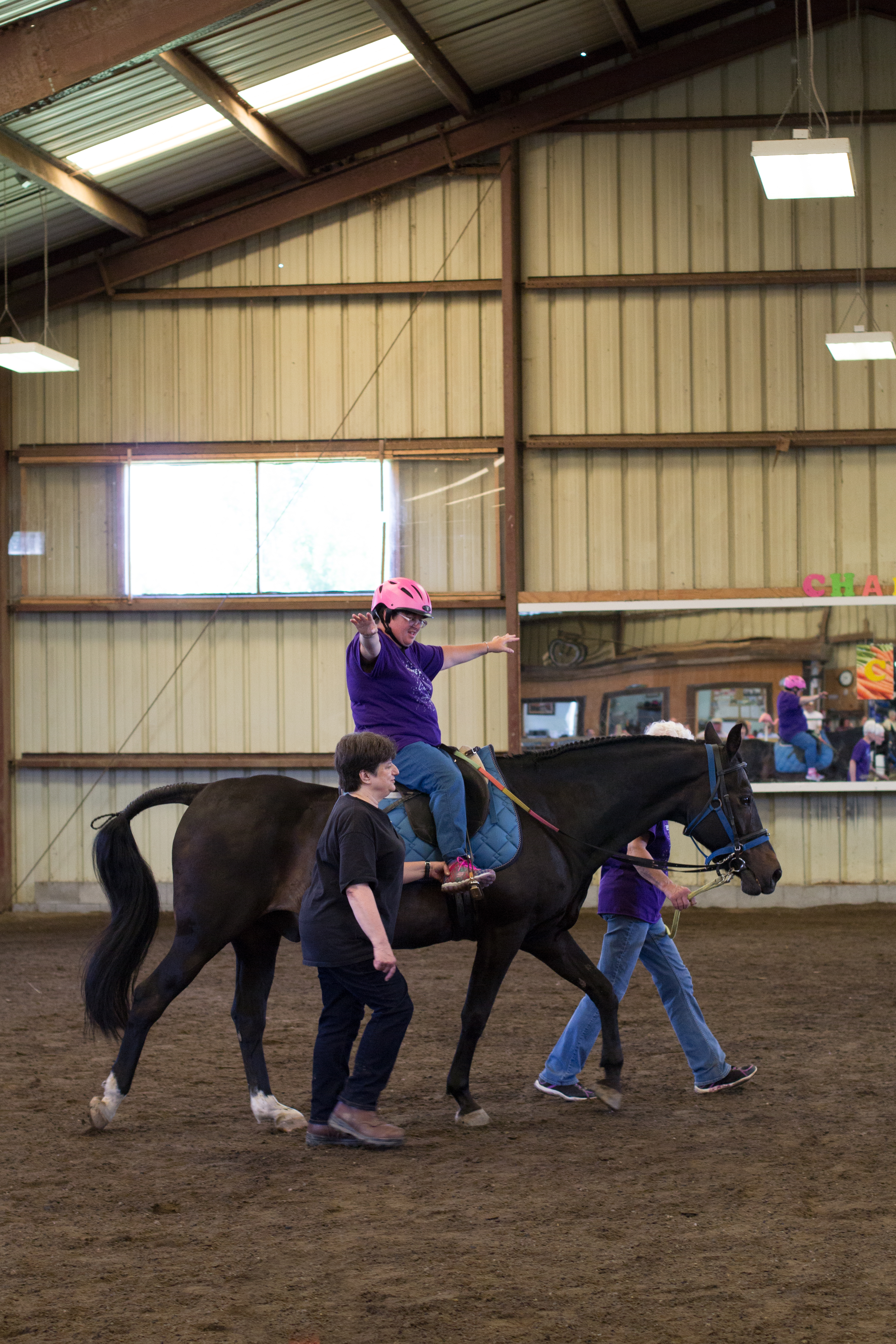 Horse Show 2017-7378
