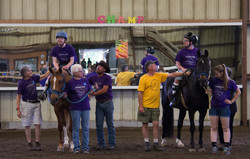 Horse Show 2017-7153 2