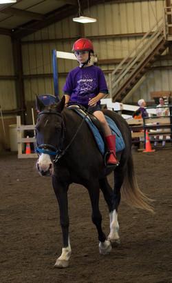 Horse Show 17-7141 2