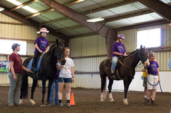 Horse Show 17-7214