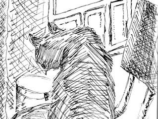 New Sketchbook for Twelve