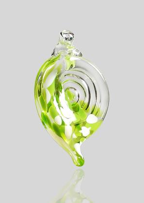 Lime & White Shell