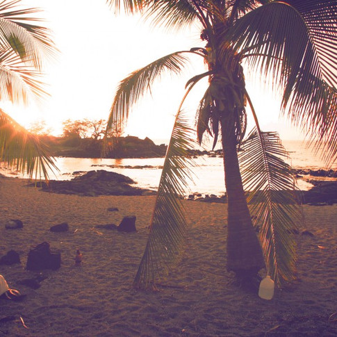 Living on the Beach Alone