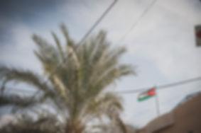 detalle bandera palestina