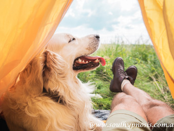 The Spiritual Connection Between Dogs And Humans