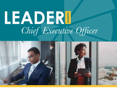 Leader Wanted - Chief Executive Officer