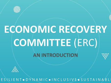 ECONOMIC RECOVERY COMMITTEE (ERC) - AN INTRODUCTION