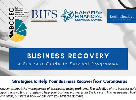 Business Recovery: A  Business Guide to Survival Programme