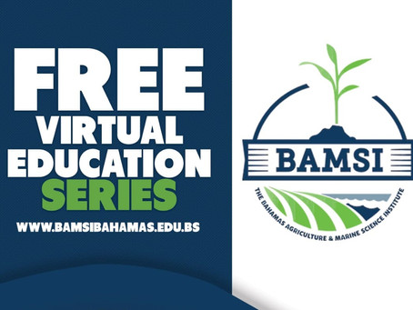BAMSI - Free Virtual Education Series