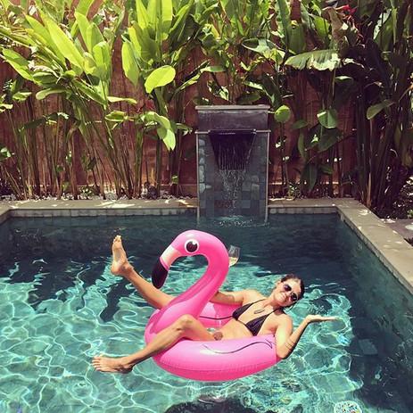pool_small_animal.jpg