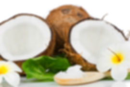 Coconut bulk order