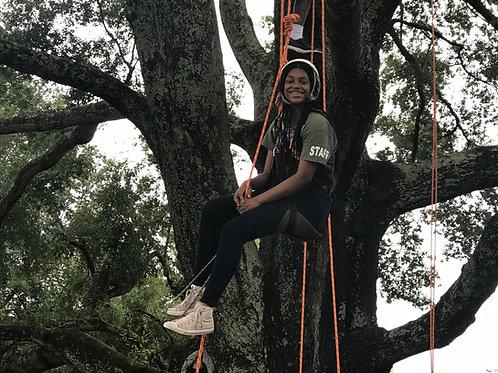 TREE CLIMBING 7/21