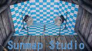 SUNMAP Studio