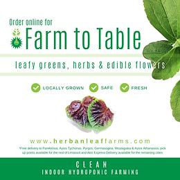 HerbanLeaf  Farms