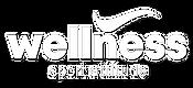 Logo Wellness Sport Attitude salle de sport & fitness à Montrond les Bains Plaine du Forez