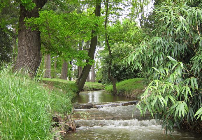 Parc de la Coise à Montrond les bains Organisation de séminaire dans la Plaine du Forez par ESPACE PRO 42 Loire