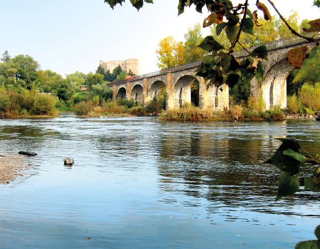 Bords de la Loire à Montrond les bains Organisation de séminaire dans la Plaine du Forez par ESPACE PRO 42 Loire