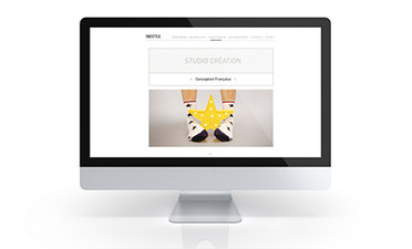 Identité visuelle - INDOTEX - Web design