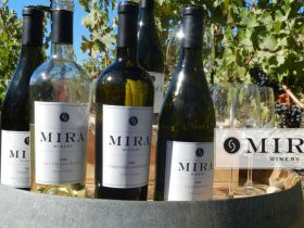 Mira Winery Celebrates 40th Anniversary of The Judgment of Paris with 2016 Judgment of Charleston