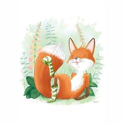Fox in socks print
