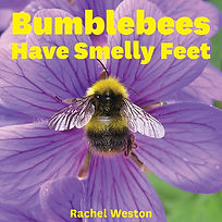 bumblebee cover front.jpg