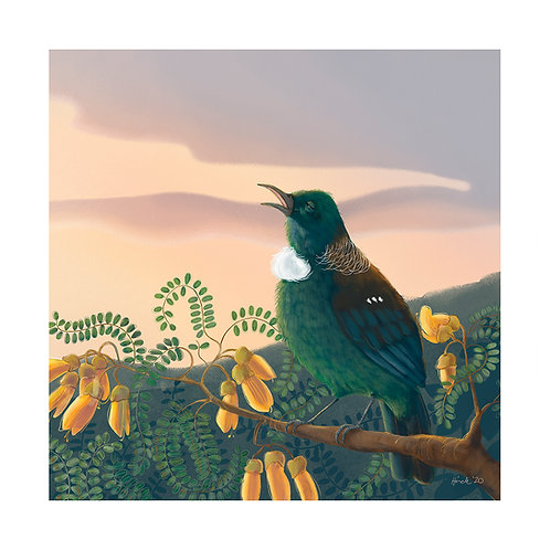 Singing Tui - A4+ and A3 Print