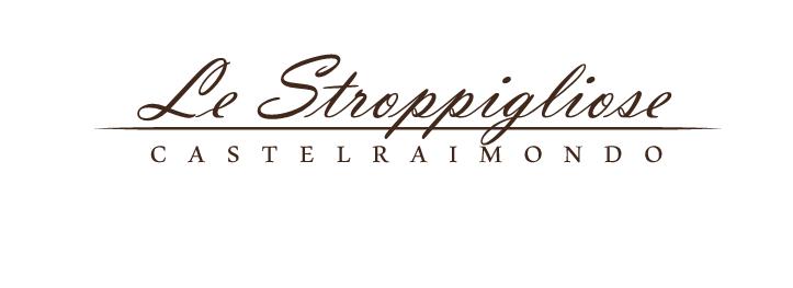 logo stropp3i (1)