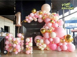 Balloon Garland with backdrop frame and