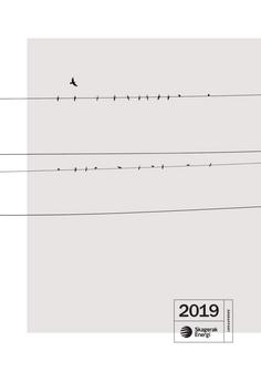 Årsrapport Skagerak Energi 2019