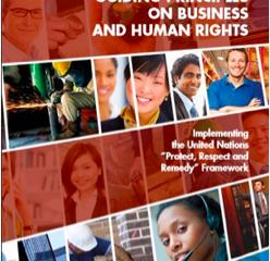 Bedrifter og menneskerettigheter: Know and Show
