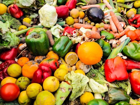FOOD SPOILAGE: A Pest On Nigeria's Agricultural Growth