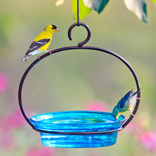 feeder love bird il hanging house listing birds dsqy