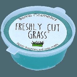 Freshly Cut Grass Mini Melt
