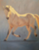 Andalusian Stallion - 48x60.jpg