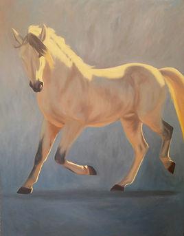 Andalusian Stallion - 48x60.jpg