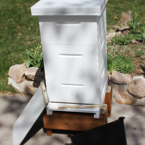 Complete Hive (3 Deep)