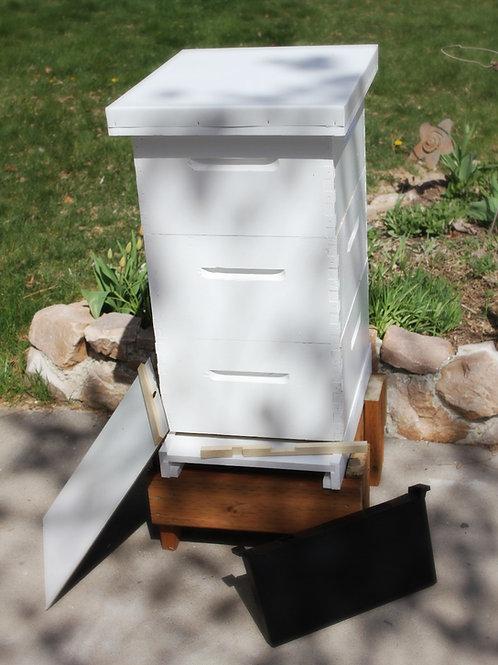 Complete Hive (3 Deep)