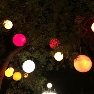 Lights everywhere! magic!.JPG