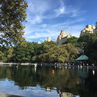 New York- Central Park.JPG