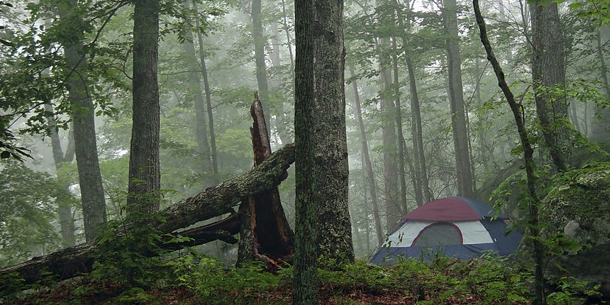 landscape-1436279654-tent-in-woods-at-dawn.jpg