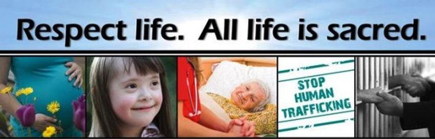respect.life.banner_edited.jpg