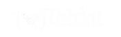 teldat-logo-white-tranparent.png